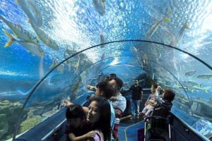 under the aquaria klcc