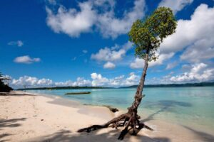 hablock island, places to visit in andaman